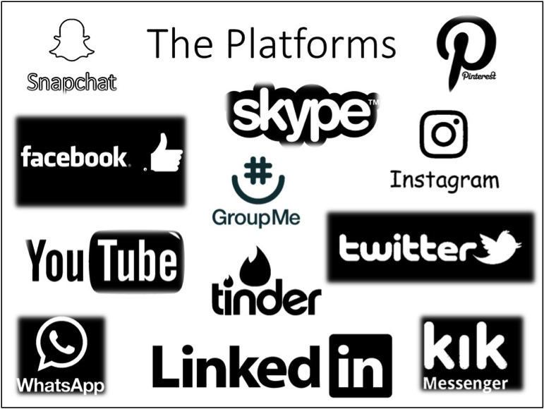 Fig. 1. The platforms of social media.